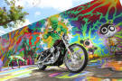 Il Wynwood Art District di Miami